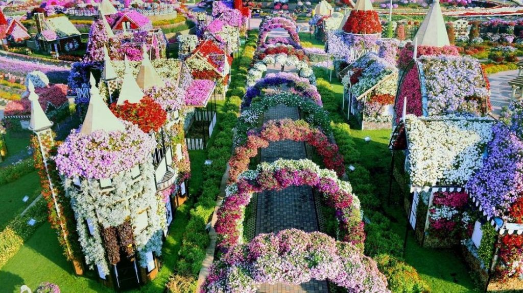 Dubai-Miracle-Garden-Tourist-Attractions-In-UAE